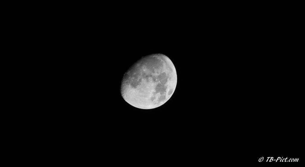 lune tb pict